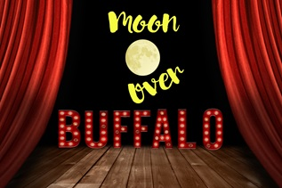 Image for Moon Over Buffalo