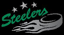 Image for Deggendorfer SC - Bietigheim Steelers