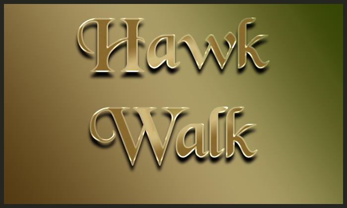 Image for 2021 Hawk Walk (Please choose a Date and Time)