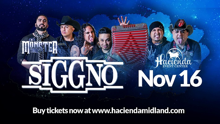 Image for Siggno