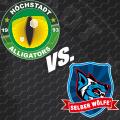 Image for Höchstadt Alligators vs. Selber Wölfe