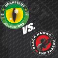 Image for Höchstadt Alligators vs. EHF Black Hawks Passau