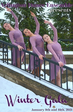 Image for Arlington Dance Ensemble Winter Gala 2020-2021